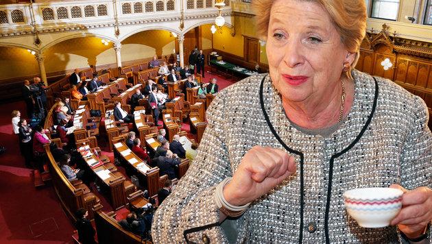 Jetzt streiten Wiens Politiker um ihre Gehälter (Bild: Zwefo)