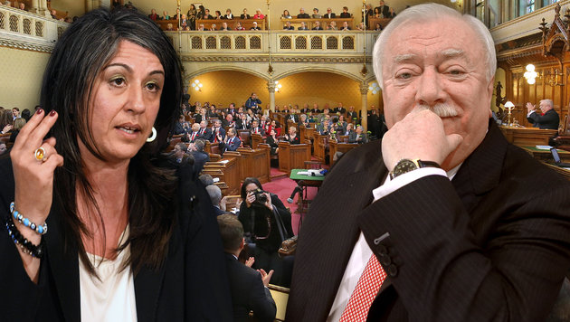 Koalitionspartner in der Krise: Maria Vassilakou (li.) und Michael Häupl (Bild: Peter Tomschi, APA/HELMUT FOHRINGER, APA/GEORG HOCHMUTH)
