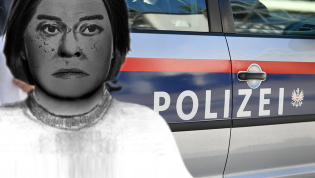 Von einem der beiden Täter konnte ein Phantombild angefertigt werden. (Bild: APA/BARBARA GINDL, LPD NÖ)