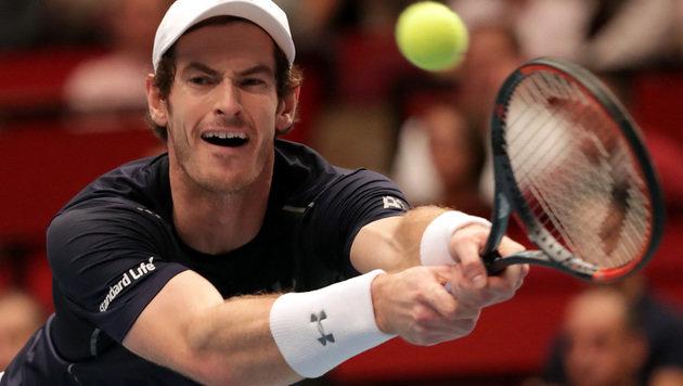 Murray triumphiert in der Wiener Stadthalle! (Bild: GEPA)