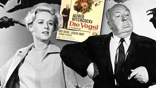 """Die Vögel""-Star: ""Hitchcock bedrängte mich"" (Bild: Universal Studios)"