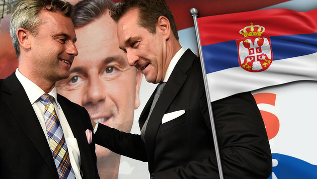 Strache: Serben als Trumpf im Kampf um die Hofburg (Bild: APA/HELMUT FOHRINGER, thinkstockphotos.de)