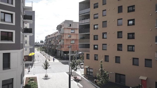 """""""Am Schauplatz"""" auf Lokalaugenschein in Aspern (Bild: ORF)"""