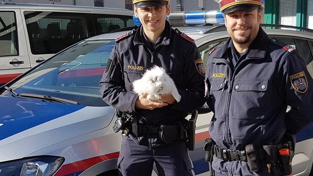 Die beiden Wiener Inspektoren brachten das Kaninchen aus der Gefahrenzone. (Bild: Polizei)