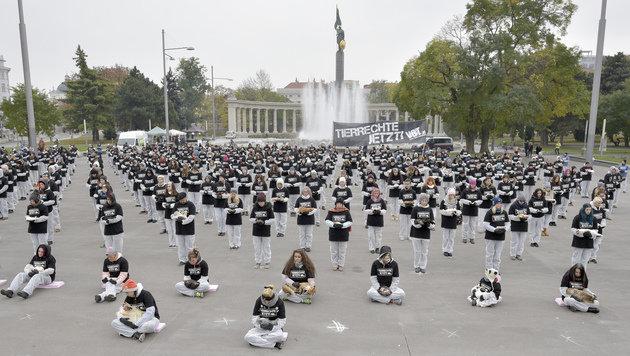 Mahnwache mit 650 toten Tieren in der Wiener City (Bild: APA/HANS PUNZ)