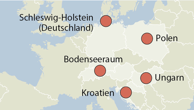 Aktuelle Vogelgrippe-Fälle gibt es in Polen, Ungarn, Kroatien, Deutschland und in Österreich. (Bild: APA)