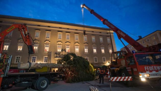 Die Berufsfeuerwehr stellte den Christbaum am Residenzplatz auf. (Bild: Neumayr/MMV)