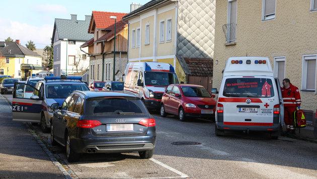 Die attackierte Witwe und ihre hochschwangere Nachbarin mussten ins Spital. (Bild: laumat.at / Matthias Lauber)