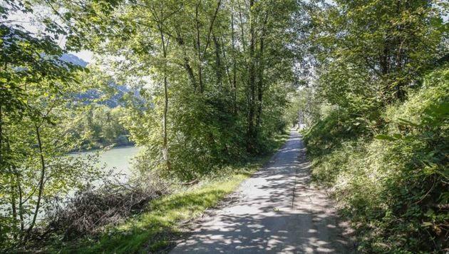 Der Treppelweg im Gemeindegebiet von Hallein - hier wurde 2015 ein 17-jähriges Mädchen vergewaltigt. (Bild: Markus Tschepp)