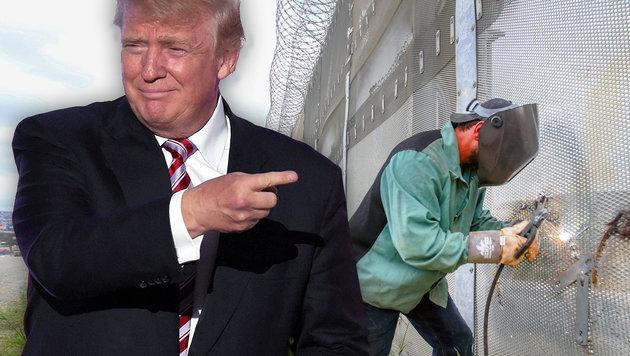 """Was der """"Trump-Effekt"""" in Österreich verändert (Bild: AFP/TIMOTHY A. CLARY, AFP/BILL WECHTER)"""