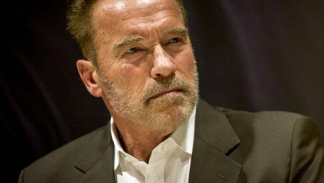 Arnold Schwarzenegger (Bild: Viennareport)