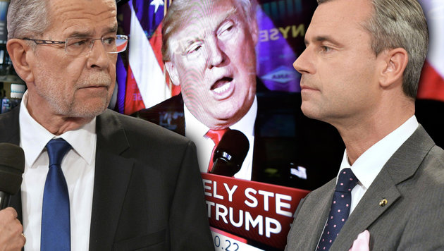 Van der Bellen warnt nach Trumps Triumph vor Hofer (Bild: APA/HERBERT NEUBAUER, AP)