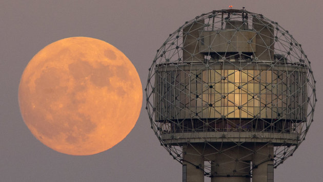 Der Supermond neben dem Reunion Tower in Dallas (Texas) (Bild: AP/The Dallas Morning News)