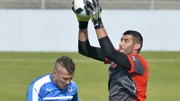 Rapid-Goalie Jan Novota hütet das Tor der Slowakei. (Bild: AFP)