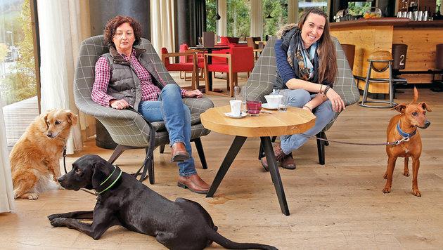 Hundeverhaltenstrainerin Christa Pirker hat ihre Hunde mitgebracht, kümmert sich um die der Gäste. (Bild: Reinhard Holl, Kronen Zeitung)