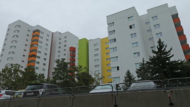 Hier, in der Großfeldsiedlung in Wien-Floridsdorf, kam es zu einer weiteren Prügelattacke. (Bild: Peter Tomschi)