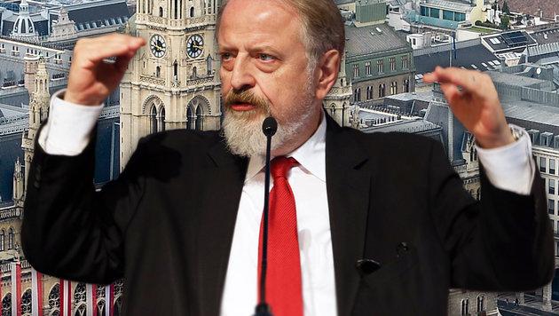 Ex-SPÖ-Bundesgeschäftsführer Gerhard Schmid (Bild: APA/HERBERT NEUBAUER, Jürgen Radspieler)