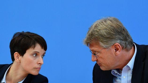Die AfD-Parteichefs Frauke Petry und Jörg Meuthen (Bild: AFP)