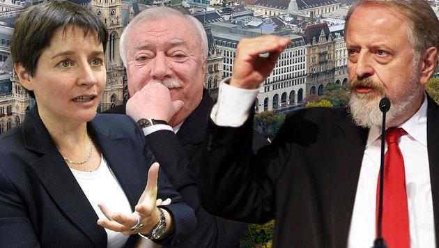 """Schmid im Klartext: """"Große Sorge um die SPÖ"""" (Bild: APA/NEUBAUER, Jürgen Radspieler, APA/FOHRINGER, APA/HOCHMUTH)"""