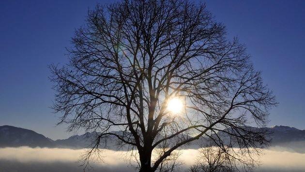 Föhn beschert uns wärmeres und trockeneres Wetter (Bild: APA/dpa)