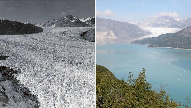 Der Muir-Gletscher in Alaska im August 1941 (links) bzw. im August 2004 (rechts) (Bild: NASA)