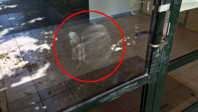 Australischer Dieb hinterließ auf Tür Po-Abdruck (Bild: APA/AFP/Victoria Police/STR)