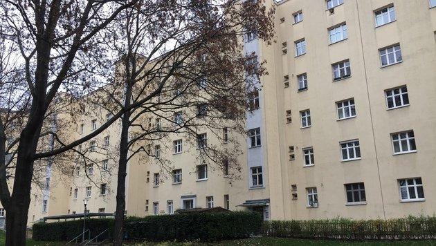 In diesem Gemeindebau in der Engerthstraße im Bezirk Leopoldstadt kam es zum dramatischen Vorfall. (Bild: Robert Herbst)