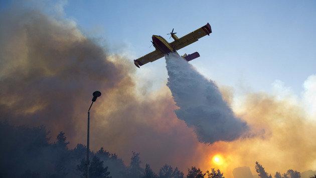 Haifa: 60.000 Menschen flüchten vor Flammen (Bild: ASSOCIATED PRESS)