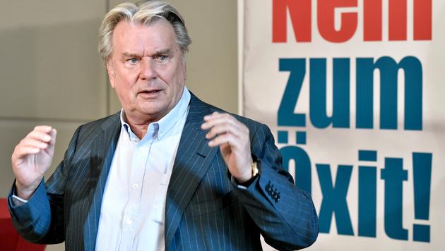 Hans Peter Haselsteiner (Bild: APA/HANS KLAUS TECHT)
