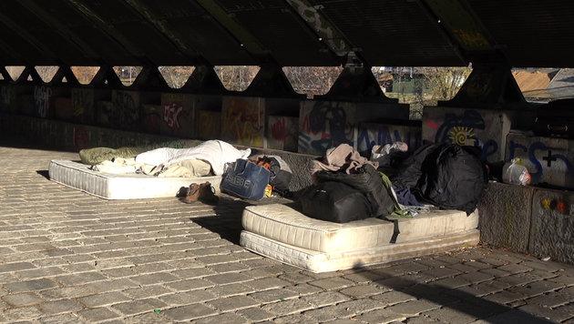 Ein Matratzenlager unter der Friedensbrücke (Bild: krone.tv)