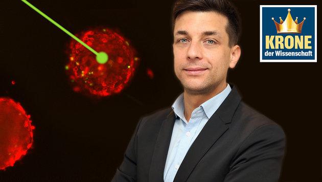 Forscher in NÖ steuert mit Licht Zellwachstum (Bild: IST Austria, Zwefo)