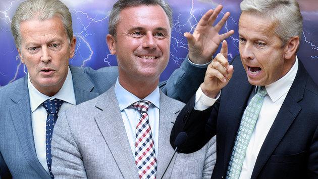 In der ÖVP fliegen richtig die Fetzen (Bild: thinkstockphotos.de, APA)