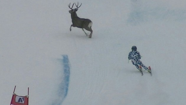 Schrecksekunde für Nachwuchsläuferin Sabrina Maier beim Speed-Training in Nakiska (Kanada)! (Bild: facebook.com/Sabrina Maier)