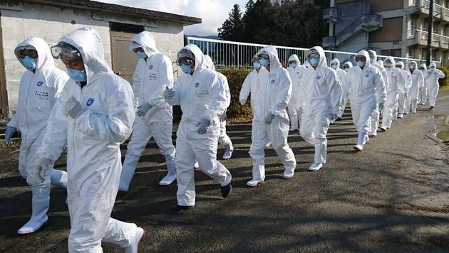 Japan keult Hunderttausende Hühner und Enten (Bild: APA/AFP/Ground Self Defense Force via Ji/STR)