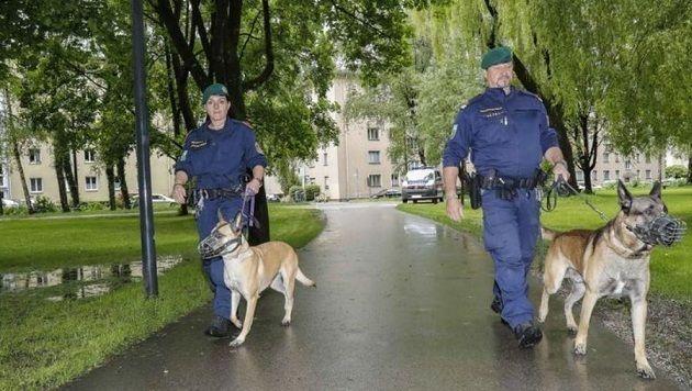 Hier im Lehener Park kam es zu dem blutigen Vorfall. Die Folge: Die Polizei erließ eine Schutzzone. (Bild: Markus Tschepp)