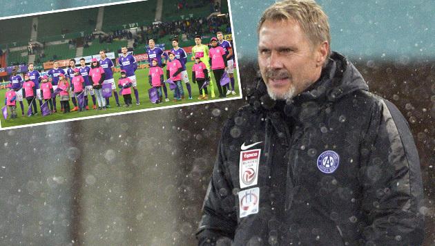 """Fink: """"Ich kann nicht 70.000 ins Stadion zaubern!"""" (Bild: APA/HANS PUNZ, GEPA)"""