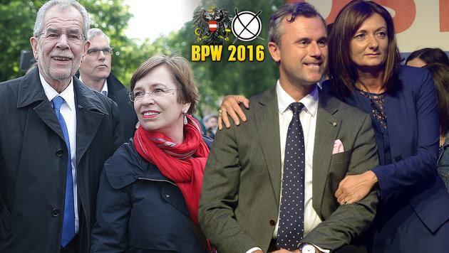 BP-Wahl: Welcher Stil zieht in die Hofburg ein? (Bild: APA/HERBERT PFARRHOFER, APA/GEORG HOCHMUTH)