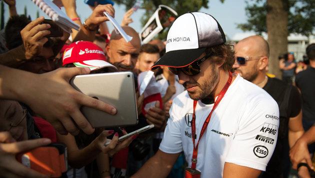 Rosberg-Rücktritt: Wer wird der Neue bei Mercedes? (Bild: GEPA pictures)