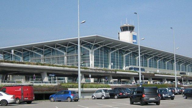 Kleinflugzeug am Flughafen Basel abgestürzt (Bild: Wikipedia/Fanny Schertzer (CC BY-SA 3.0))