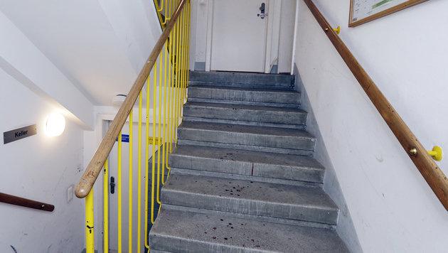 Krebskranker schoss in Wohnung auf 50-Jährige (Bild: Klemens Groh)