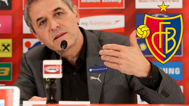 Schweizer Fans: Koller soll Basel-Coach werden! (Bild: GEPA)