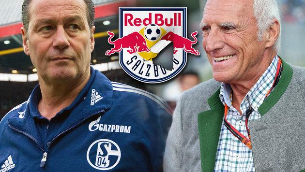 Stevens: Salzburger für Mateschitz nicht wichtig! (Bild: GEPA, dpa/Uwe Anspach, thinkstockphotos.de)