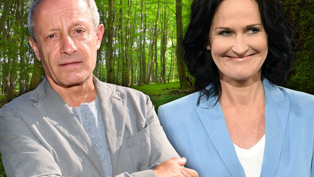 Peter Pilz, Eva Glawischnig (Bild: thinkstockphotos.de, APA/Helmut Fohringer, Uta Rojsek-Wiedergut)