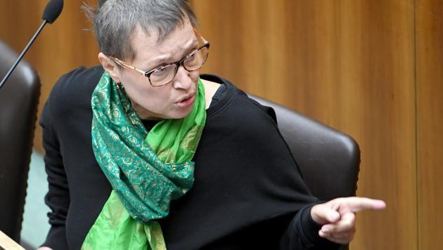 Gesundheitsministerin Sabine Oberhauser (Bild: APA/ROLAND SCHLAGER)