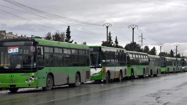 Eine Schlange leerer Busse in Aleppo (Bild: APA/AFP/GEORGE OURFALIAN)