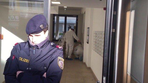 Wien: Serbe ersticht Ehefrau - auf der Flucht (Bild: Andi Schiel)