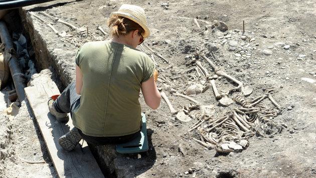 Heuer in St. Pölten über 2800 Skelette freigelegt (Bild: Gabriele Moser)