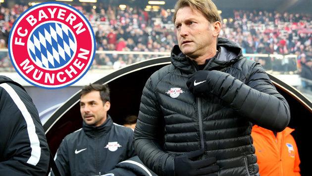 RB-Coach Ralph Hasenhüttl (Bild: APA/dpa-Zentralbild/Jan Woitas)