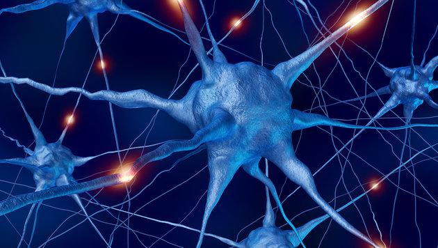"""Forscher entdecken """"Vorratslager"""" in Nervenzellen (Bild: thinkstockphotos.de)"""