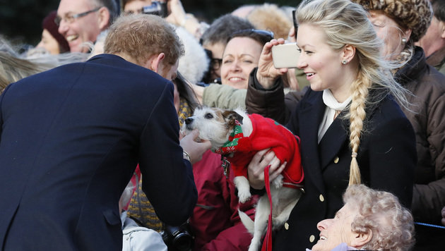 Prinz Harry streichelt einen kleinen Hund. (Bild: ASSOCIATED PRESS)
